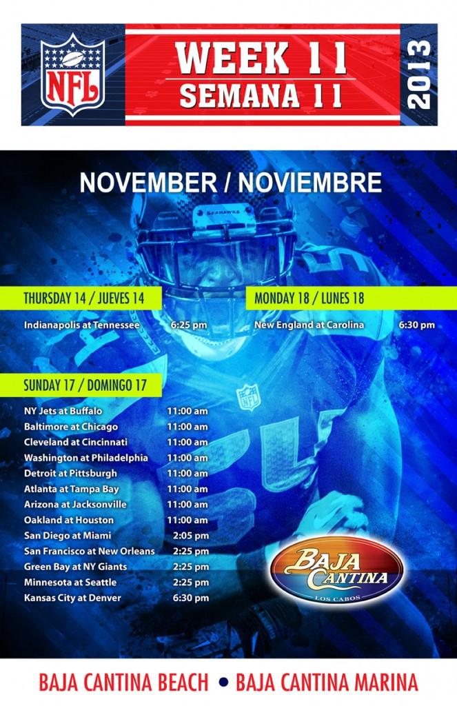 Semana 11 NFL 2013