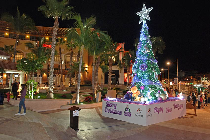 Christmas Tree at Puerto Paraiso Plaza Cabo