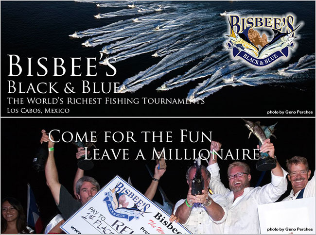bisbees-black-blue-tournament