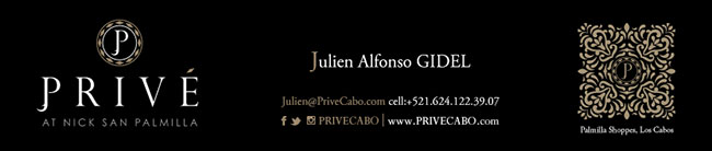 Julien-Gidel-Prive-Nicksan-Palmilla