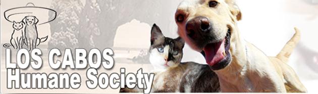 los-cabos-humane-society