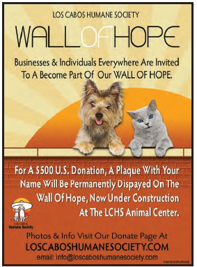 los-cabos-humane-society.wall-of-hope