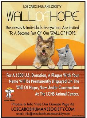 los-cabos-humane-society.wall-of-hope