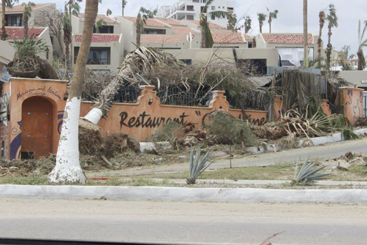 Hurricane Odile Archives Events Los Cabos