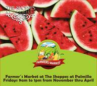 the-shoppes-at-palmilla-11