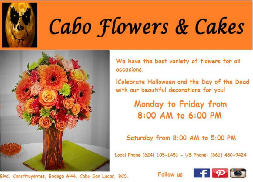 cabo-flowers-and-cakes