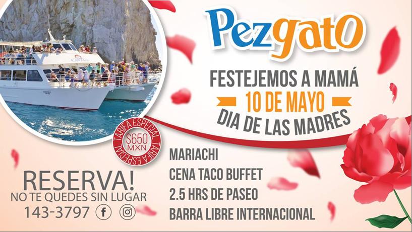 Dia de las Madres at Pez Gato